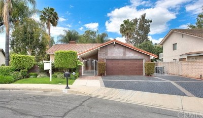 Chino Hills Single Family Home For Sale: 2447 Malachite Court