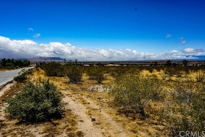 Residential Lots & Land For Sale: Mesquite Road