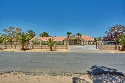 Apple Valley Single Family Home For Sale: 19380 Tonkawan Road