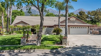Upland Single Family Home For Sale: 361 Paxton Court