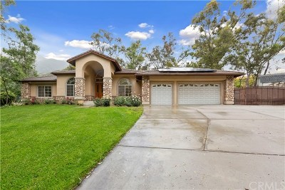 Rancho Cucamonga Single Family Home For Sale: 10158 Sun Valley Drive