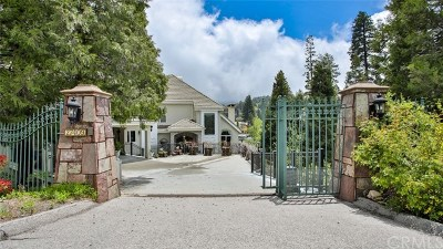 Lake Arrowhead Single Family Home For Sale: 27409 N Bay Road