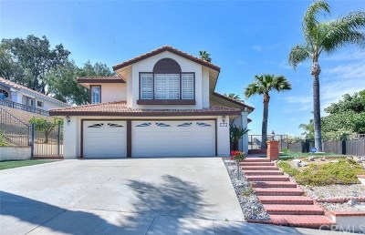Chino Hills Single Family Home For Sale: 2396 Wandering Ridge Drive