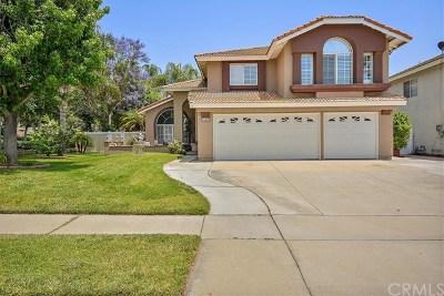 Chino Single Family Home For Sale: 13401 San Antonio Avenue