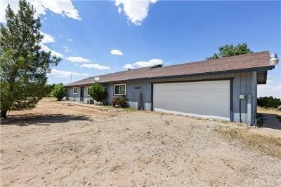Phelan Single Family Home For Sale: 4824 Silver Ridge Drive