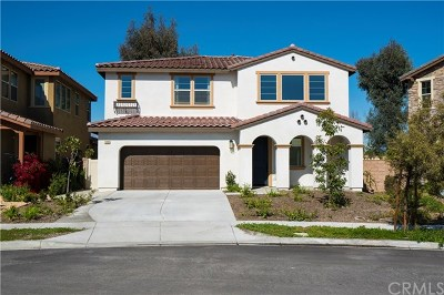 Chino Single Family Home For Sale: 3990 Citrus Grove Road