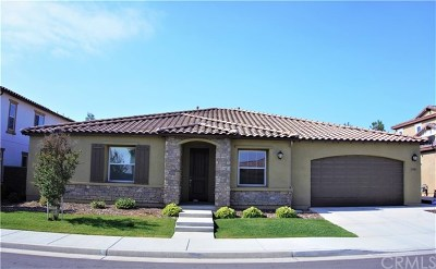 Lake Elsinore Single Family Home For Sale: 29300 Grand Slam
