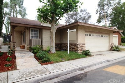Riverside Single Family Home For Sale: 4261 Mill Creek Street