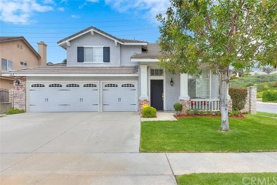 Chino Hills Single Family Home For Sale: 2886 Champion Street