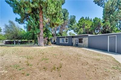 Ontario Single Family Home For Sale: 425 N San Antonio Avenue
