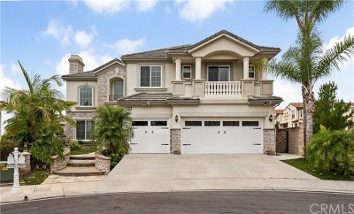 Yorba Linda Single Family Home For Sale: 4001 Humboldt Lane