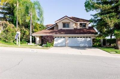 Walnut Single Family Home For Sale: 20934 Granite Wells