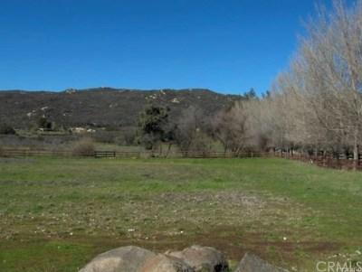 Murrieta Residential Lots & Land For Sale: Calle De Lobo