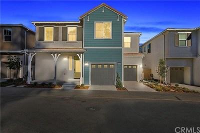 Pomona Single Family Home For Sale: 16 Haywood Court