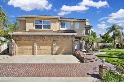 Walnut Single Family Home For Sale: 19820 E Skyline Drive