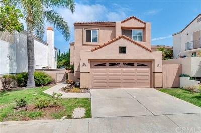 San Clemente Condo/Townhouse For Sale: 703 Via Otono
