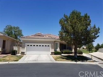 Apple Valley Single Family Home For Sale: 19400 Macklin Street
