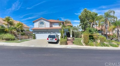 Chino Hills Single Family Home For Sale: 2126 Monteverde Drive