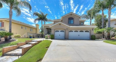 Chino Hills Single Family Home For Sale: 1675 Rancho Hills Drive
