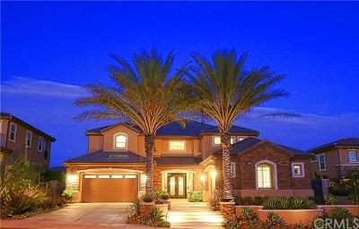 Yorba Linda Single Family Home For Sale: 4344 Pepperdine Place