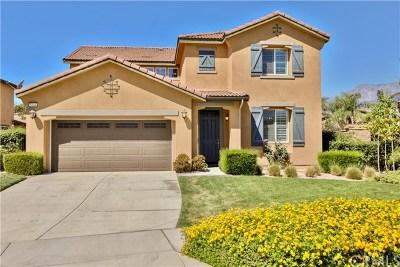 Fontana Single Family Home For Sale: 5344 Strawberry Way