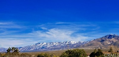 Apple Valley Residential Lots & Land For Sale: Loma Vista Road