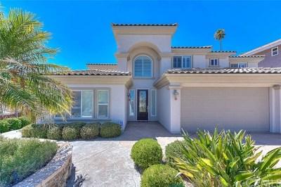 Canyon Lake Single Family Home For Sale: 29515 Longhorn Drive