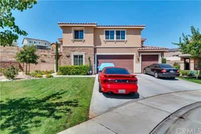 Lake Elsinore Single Family Home For Sale: 36537 Bianca Court