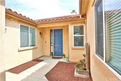 San Bernardino Single Family Home For Sale: 6589 N Ryan Lane