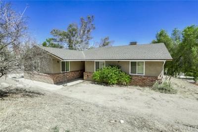 Perris Single Family Home For Sale: 27290 Irma Street
