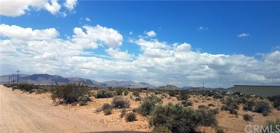 Lucerne Valley Residential Lots & Land For Sale: 36400 Smoke Bush Road