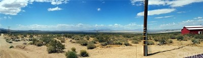 San Bernardino County Residential Lots & Land For Sale: 48870 Cholla Road
