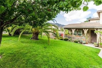 Corona Single Family Home For Sale: 23537 Cantara Road