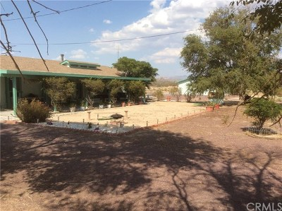 Newberry Springs Single Family Home For Sale: 48856 Silver Valley Road