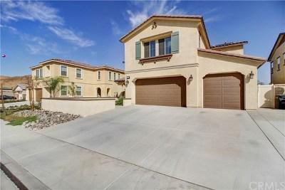 Lake Elsinore Single Family Home For Sale: 36626 Aloe Drive