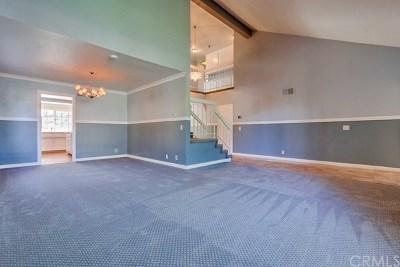 Anaheim Hills Single Family Home For Sale: 6734 E Kentucky Avenue