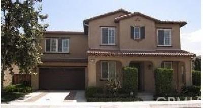 Orange Single Family Home For Sale: 264 W Pebble Creek Lane