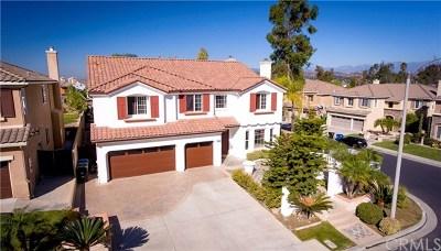 Walnut Single Family Home For Sale: 1356 Bellavista Drive