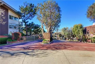 Palos Verdes Estates, Rancho Palos Verdes, Rolling Hills Estates Multi Family Home For Sale: 6526 Ocean Crest Drive
