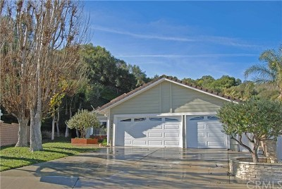 Rowland Heights Single Family Home For Sale: 2539 Saleroso Drive