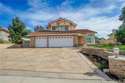Yorba Linda Single Family Home For Sale: 5180 Via Mariposa