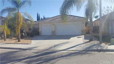 Wildomar Single Family Home For Sale: 24861 Parkland Ct