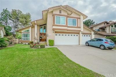 Single Family Home For Sale: 3548 Falcon Ridge Road