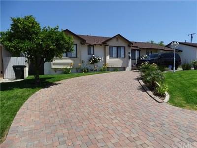 La Habra Heights Single Family Home For Sale: 161 Janine Drive
