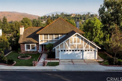 Yorba Linda Single Family Home For Sale: 4076 Pepper Avenue