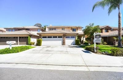 Anaheim Hills Single Family Home For Sale: 988 S Matthew Way