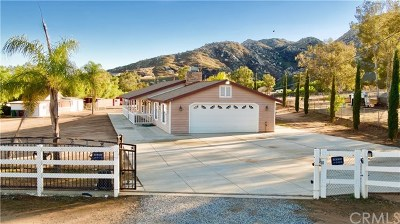 Moreno Valley Single Family Home For Sale: 22133 Big Timber Road