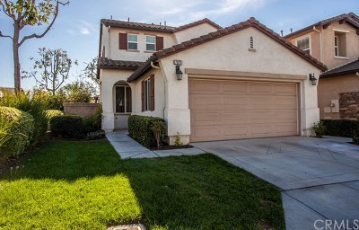 Chino Single Family Home For Sale: 7023 Swiss Street