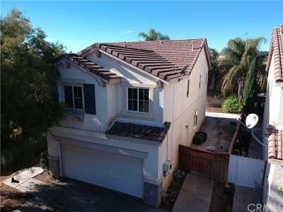 Perris Single Family Home For Sale: 1002 Leopard Ln