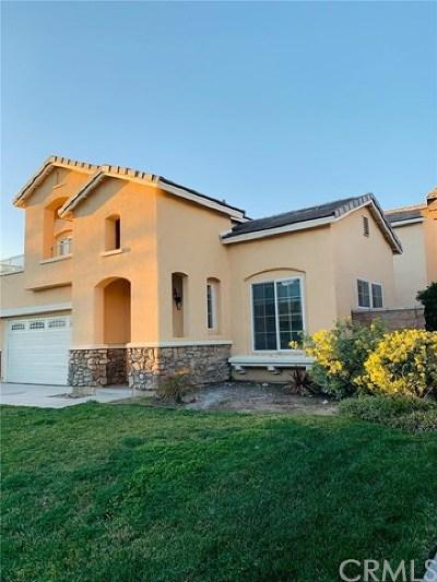 Hemet Single Family Home For Sale: 3122 Red Cedar